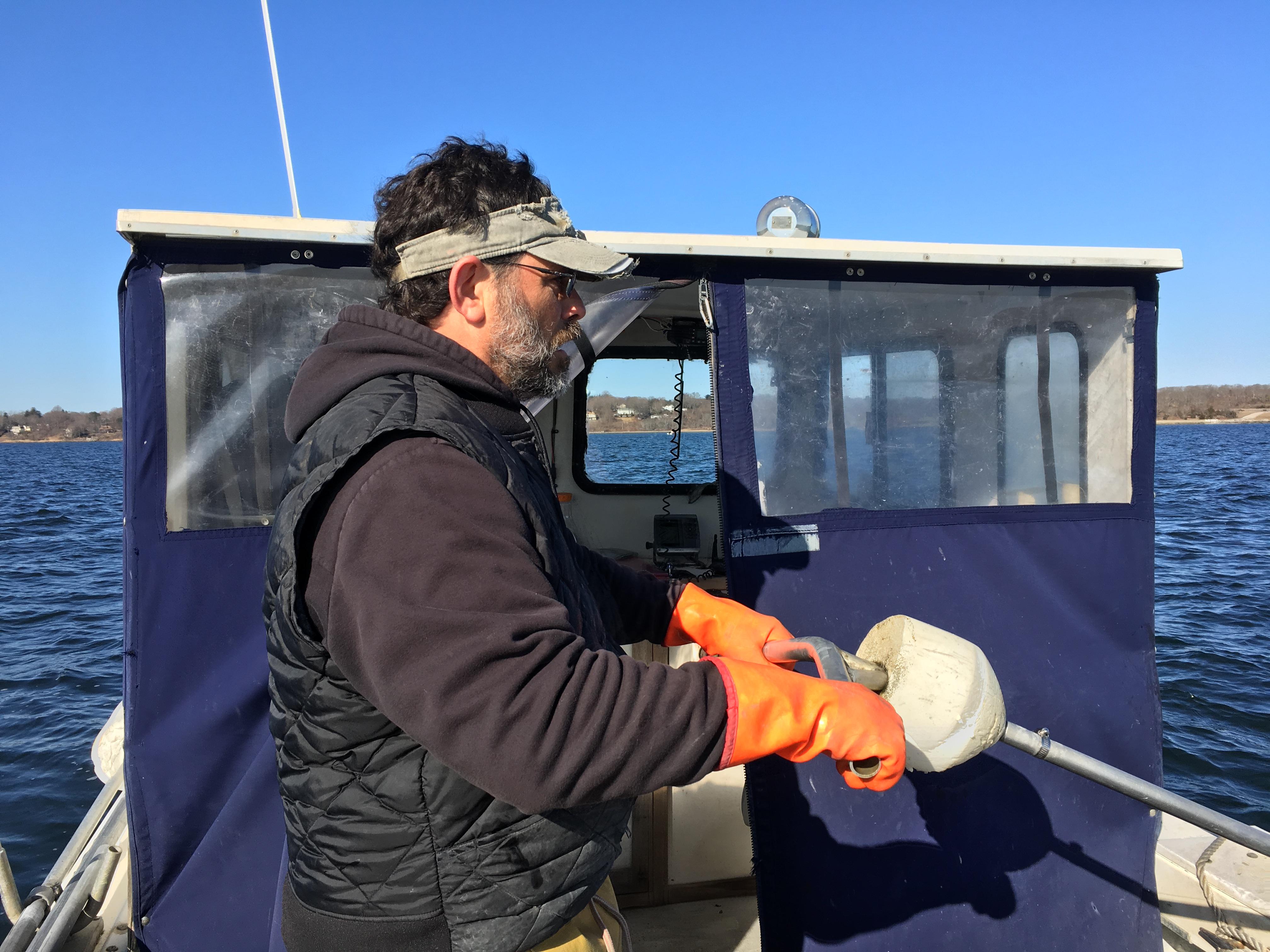 Ghigliotti uses the bullrake to dig for quahogs on Narragansett Bay
