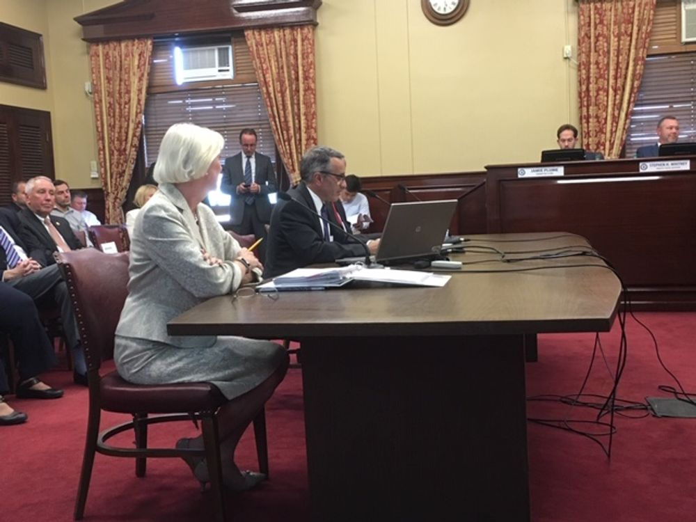Revenue lawyer Marilyn McConaghy and Director Mark Furcolo testify in Senate Finance.