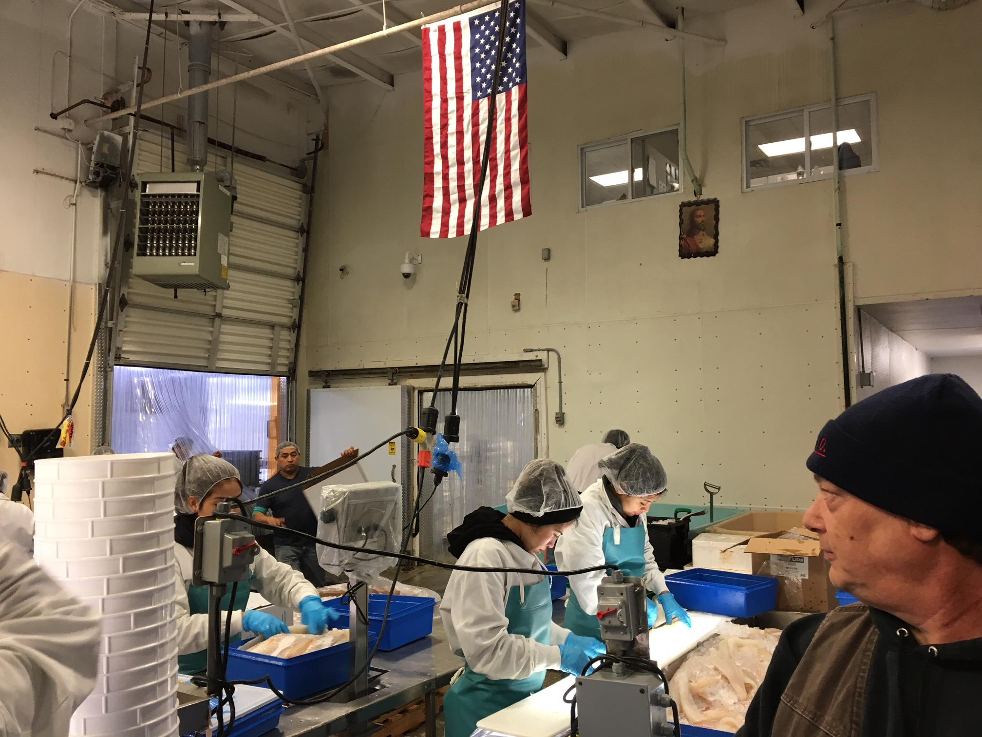 OSM:NB Tail-to-Scales, Using the Whole Fish in New Bedford