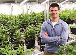 Sam Barber, president of Cultivate Holdings Inc. in Leicester, is seen at the firm's marijuana growing facility.