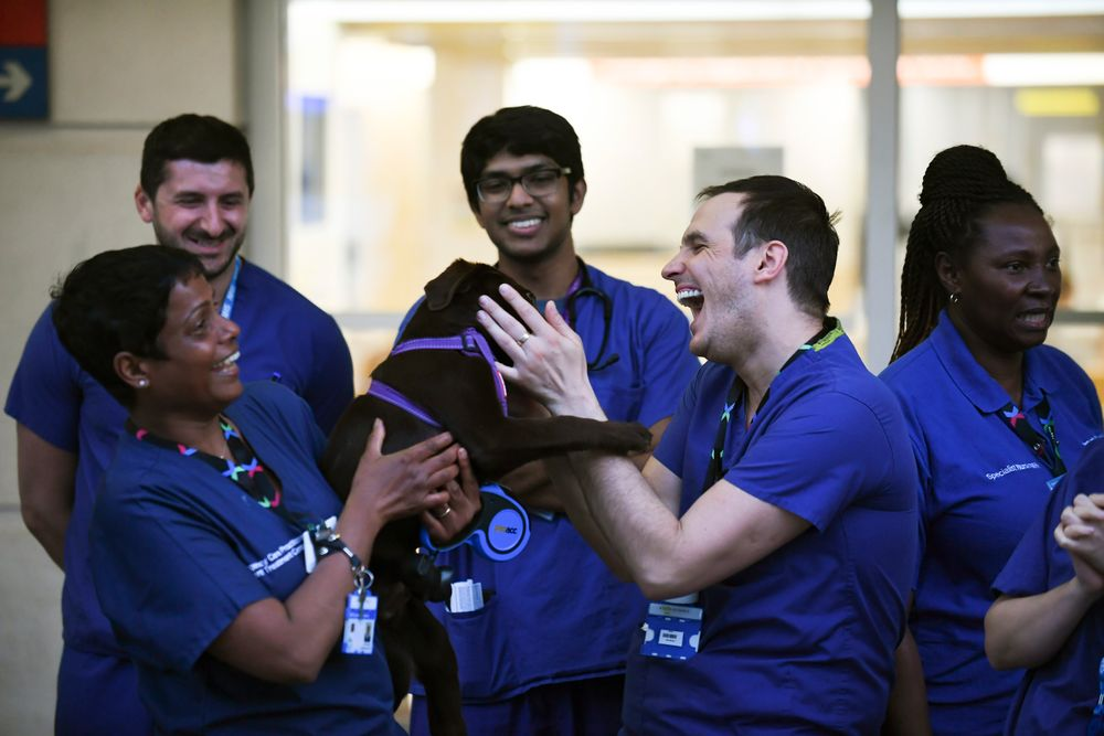 NHS staff applaud outside the Chelsea and Westminster Hospital in London during the weekly
