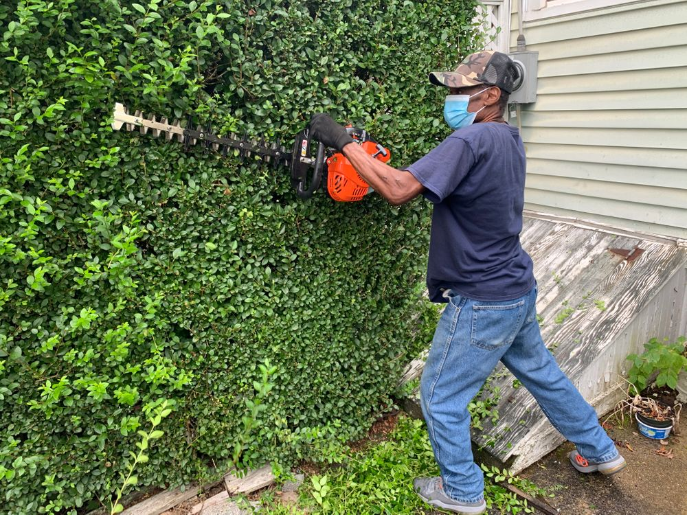 Harry Jones trims an overgrown hedge in Newport. In addition to his computer repair business, he operates a landscaping and lawn care business.