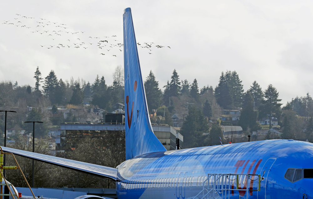 A flock of birds flies past a Boeing 737 MAX 8 airplane being built for TUI Group at Boeing Co.'s Renton Assembly Plant Wednesday, March 13, 2019, in Renton, Wash. President Donald Trump says the U.S. is issuing an emergency order grounding all Boeing 737 Max 8 and Max 9 aircraft in the wake of a crash of an Ethiopian Airliner. (AP Photo/Ted S. Warren)