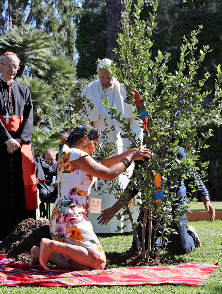 Pope Francis looks on during a tree-planting ceremony on the occasion of the feast of St. Francis of Assisi, the patron saint of ecology, at the Vatican, Friday, Oct. 4, 2019. The ceremony takes place two days before a Synod of bishops on the Pan-Amazon region opens at the Vatican to address the ecological, social and spiritual needs of indigenous peoples in the Amazon. (AP Photo/Alessandra Tarantino)