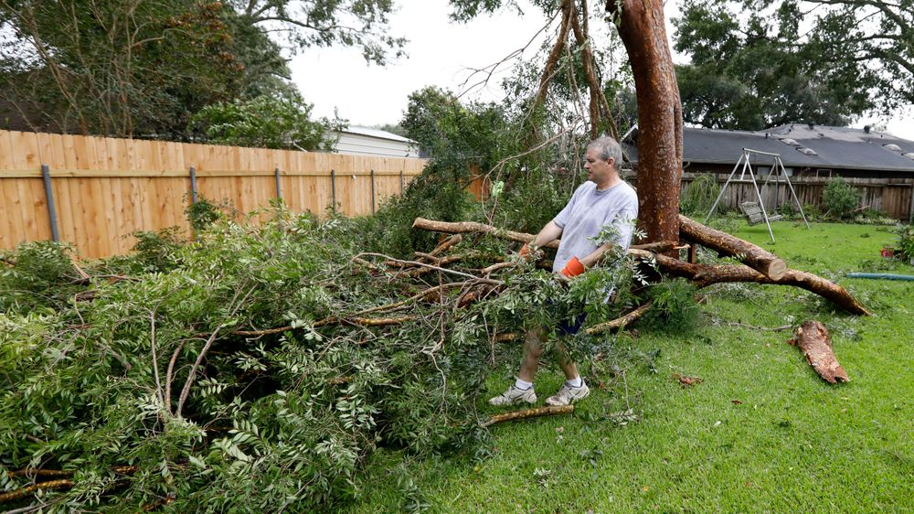 Steve Bergeron collects downed branches from a Tropical Storm Barry damaged backyard tree, Sunday, July 14, 2019, in Morgan City, La. Bergeron and his wife, Lois Bergeron, far background, spent much of their Sunday morning cleaning up tree limbs, clumps of leaves and other storm debris. (AP Photo/Rogelio V. Solis)