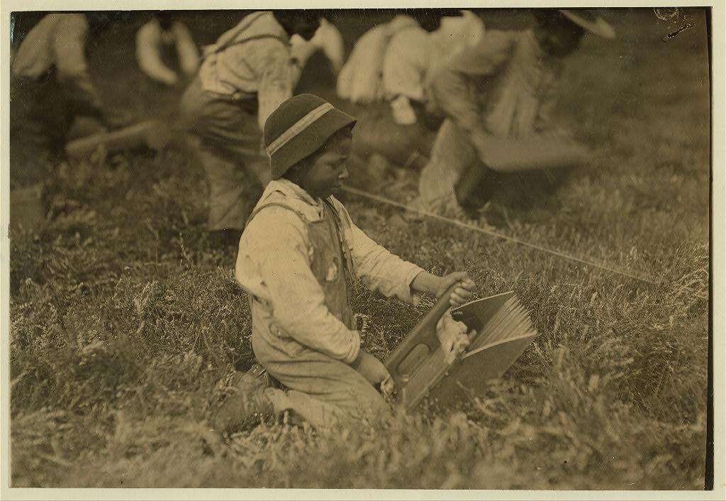 A young worker at Hollow Branch Bog near Wareham, Mass., in September 191