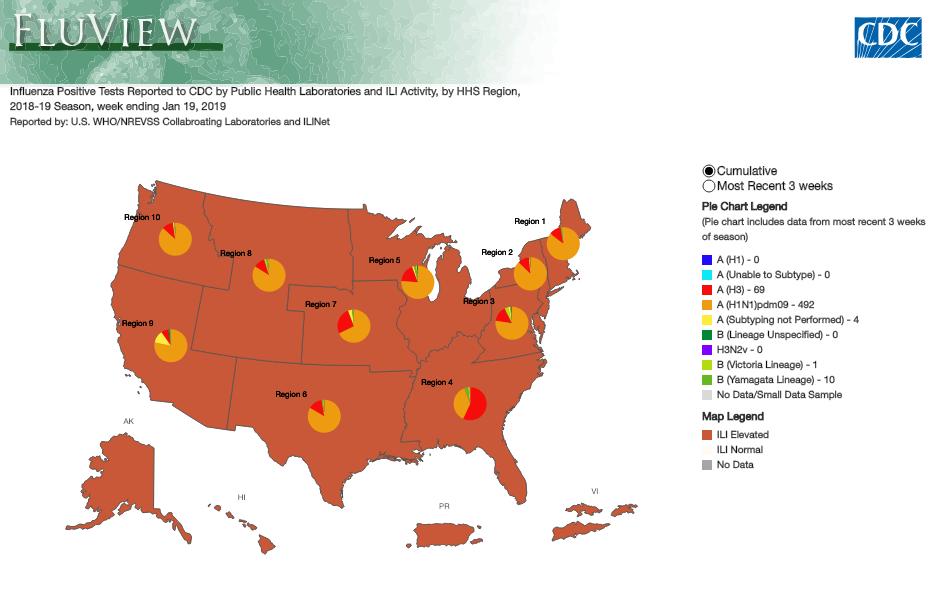 A CDC web tool provides a flu