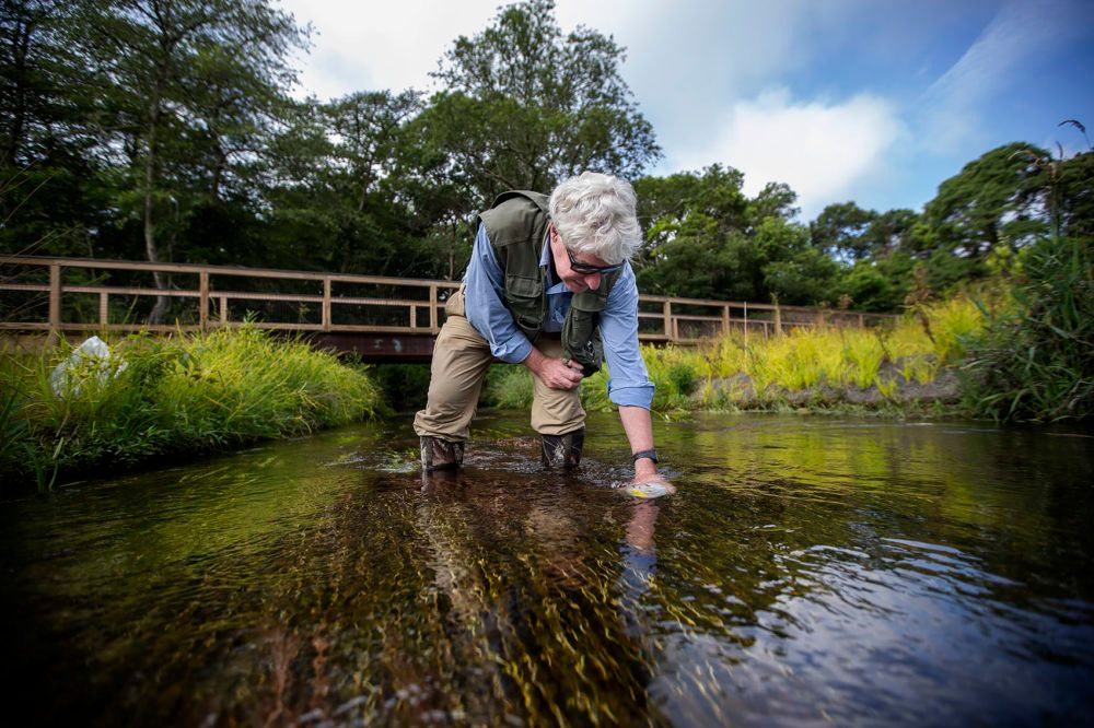 Chris Neill, a senior scientist at the Woods Hole Research Center, takes water samples from the Coonamessett River.