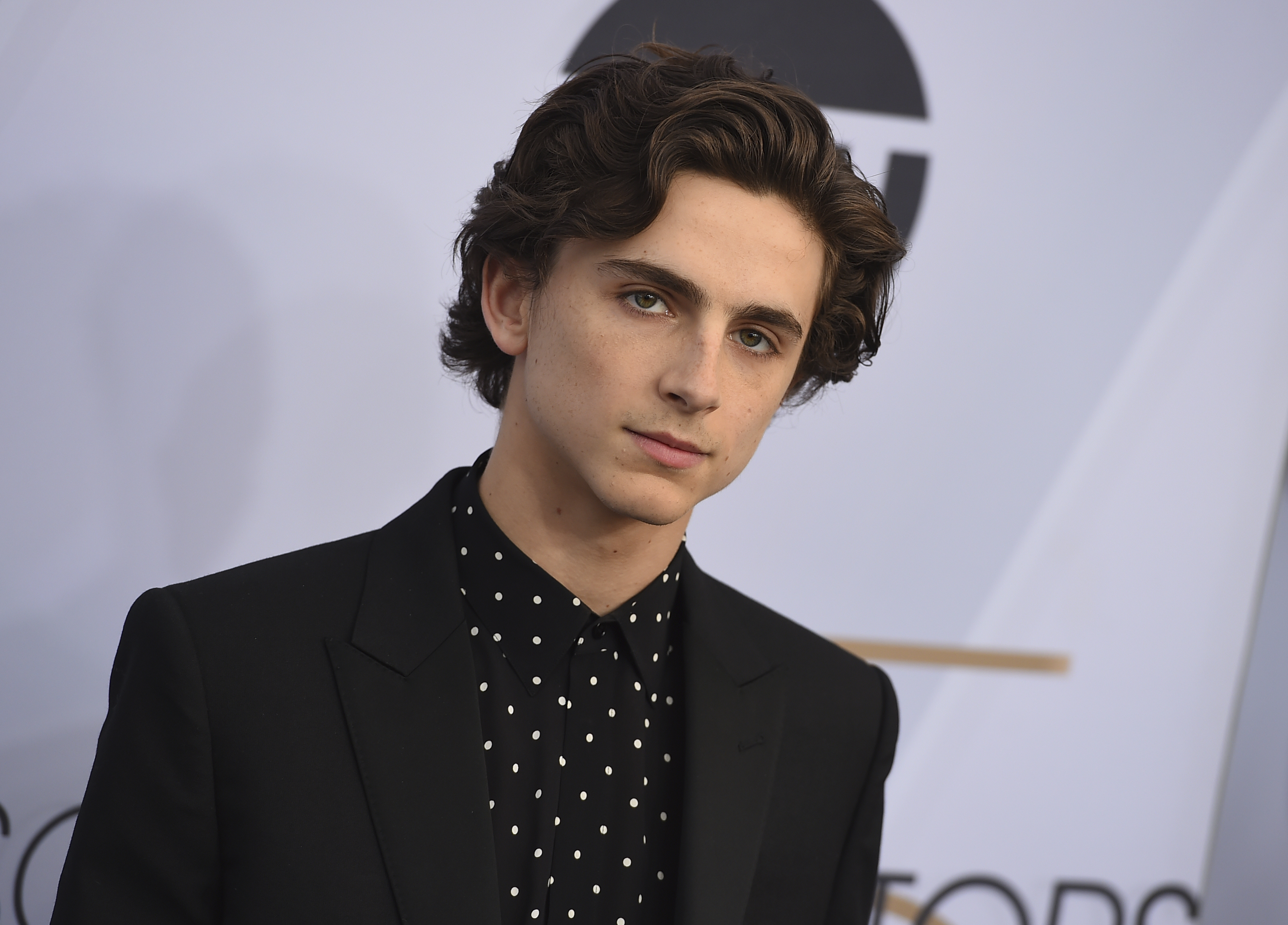 Timothee Chalamet arrives at the 25th annual Screen Actors Guild Awards at the Shrine Auditorium & Expo Hall on Sunday, Jan. 27, 2019, in Los Angeles. (Photo by Jordan Strauss/Invision/AP)