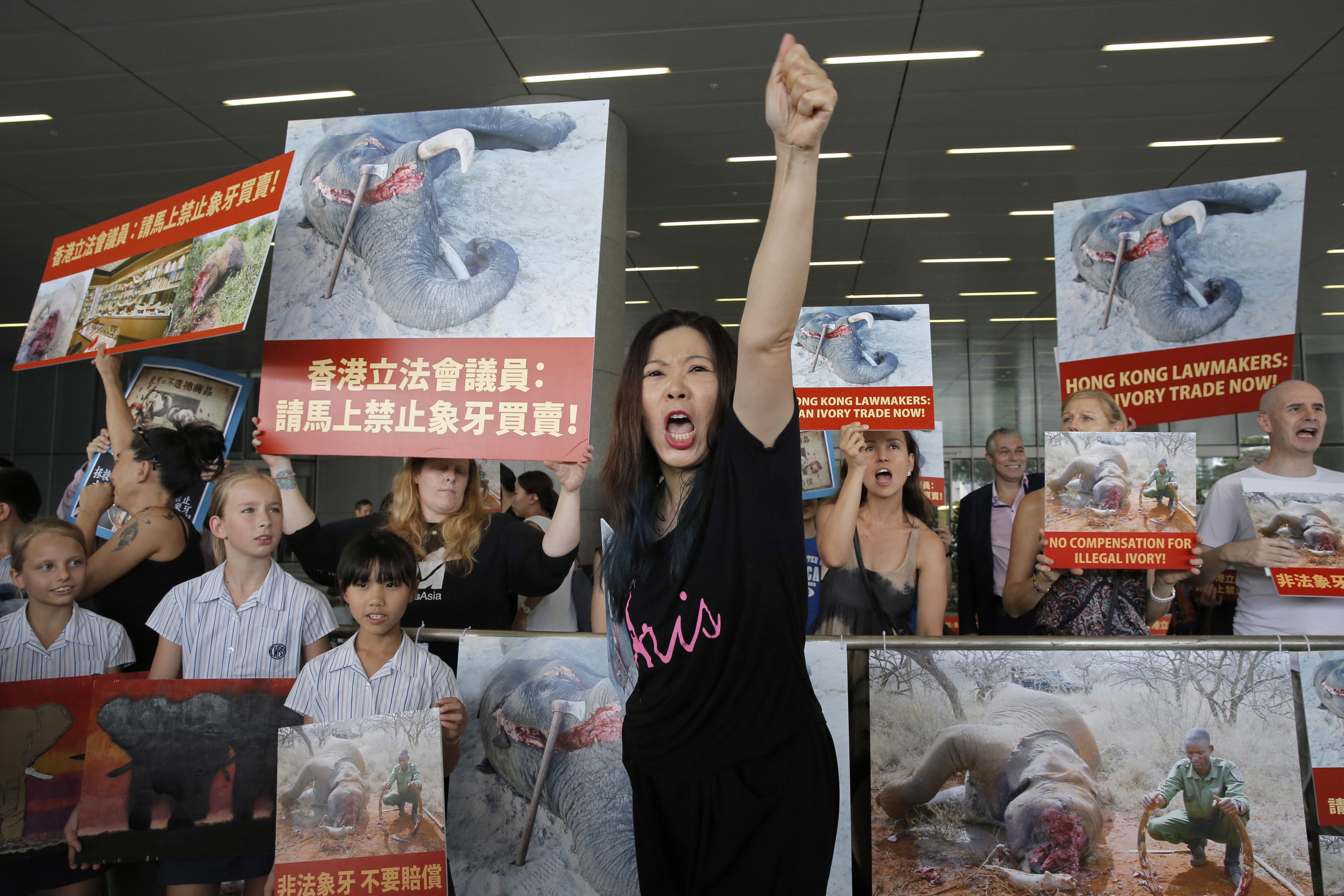 FILE - In this June 6, 2017, file photo, animal conservation activists hold pictures of elephants being killed for their ivory tusks, outside the Legislative Council in Hong Kong. Hong Kong customs officers have intercepted a record 8.3 tons of pangolin scales and hundreds of elephant tusks worth more than $8 million combined, underscoring the threat to endangered species from demand in Asia. (AP Photo/Kin Cheung, File)