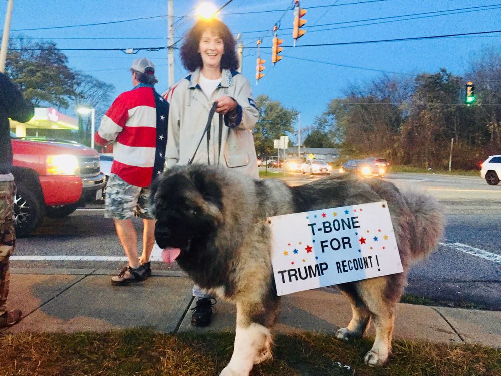 A supporter of President Trump rallies with her dog T-Bone outside of a Trump merchandise store in Somerset.