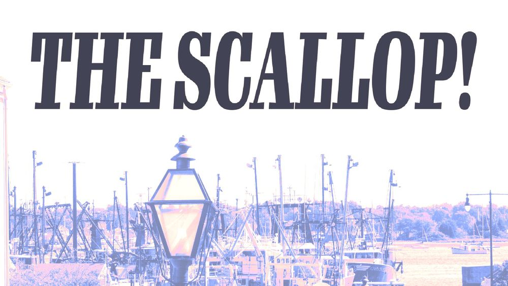 """The Scallop, a new local publication in New Bedford, launched, lead editor Sawyer Pollitt said, in response to a lack of fair and balanced news coverage from the New Bedford Guide. """"What I really want to do is differentiate The Scallop from other local news sources,"""" Pollitt said. """"And give protesters an equal platform on which to stand with the rest of the voices in the area."""""""